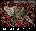 Нажмите на изображение для увеличения Название: CIMG0597.jpg Просмотров: 37 Размер:47.3 Кб ID:38032